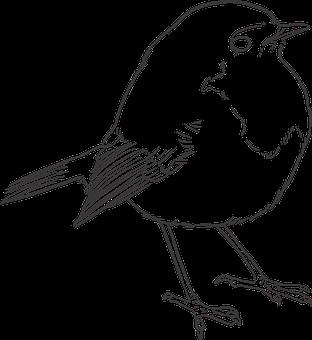 Over 30 Free Sparrow Vectors Pixabay Pixabay