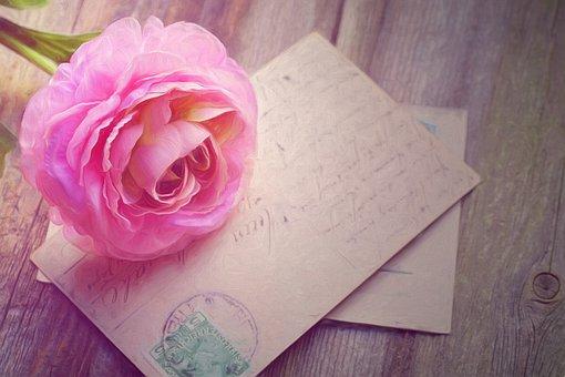 Pintura, Rosa, Tarjetas, Postales