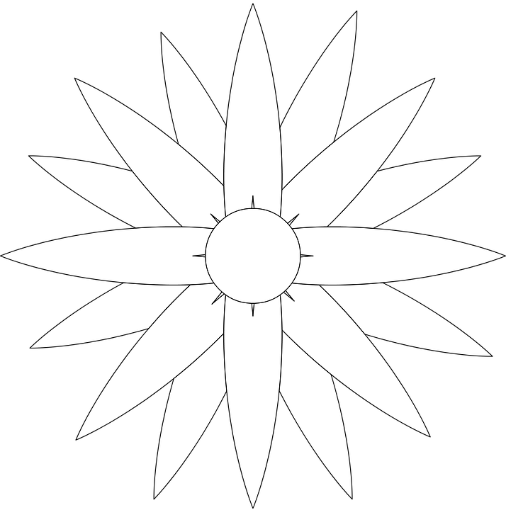 Flor Margaret Dibujo Para · Imagen gratis en Pixabay