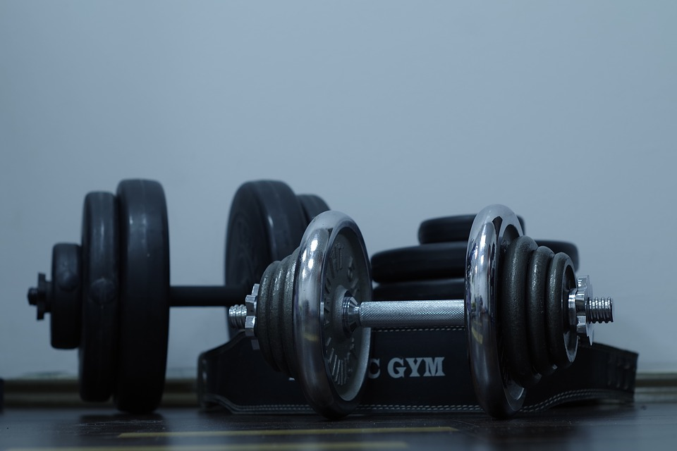 Weight Lifting Charts: Gym - Free images on Pixabay,Chart