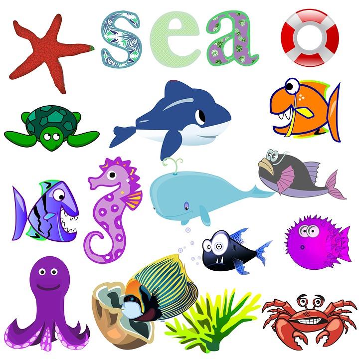 980 Koleksi Gambar Kolase Hewan Ikan HD Terbaik