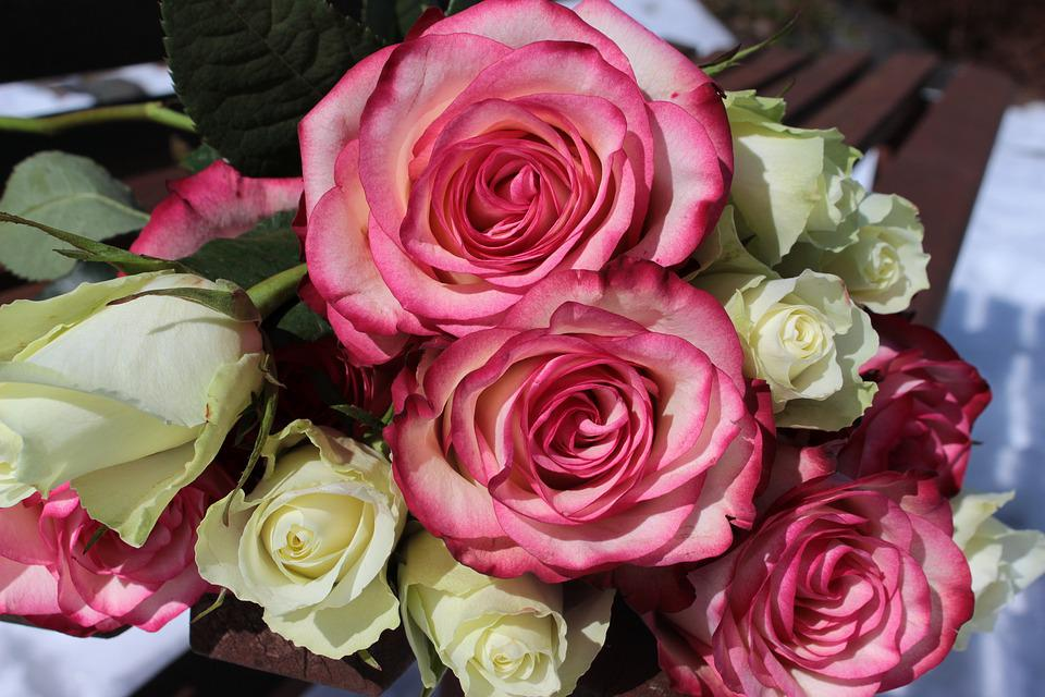Bouquet de roses photo gratuite sur pixabay for Bouquet de roses blanches