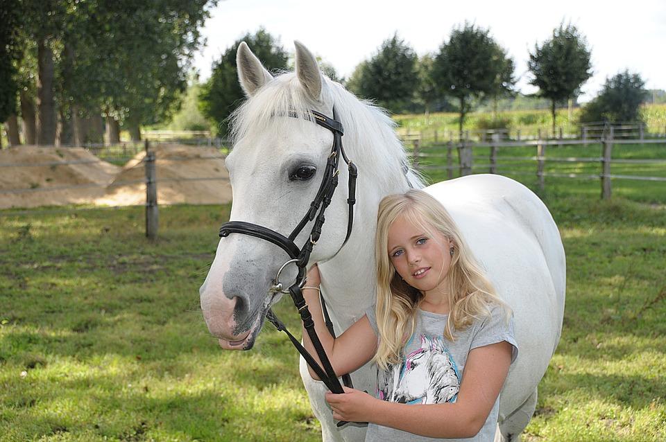 ポニー, 金型, カップリング, 小さな女の子, 馬の頭, 子, 顔, 肖像画