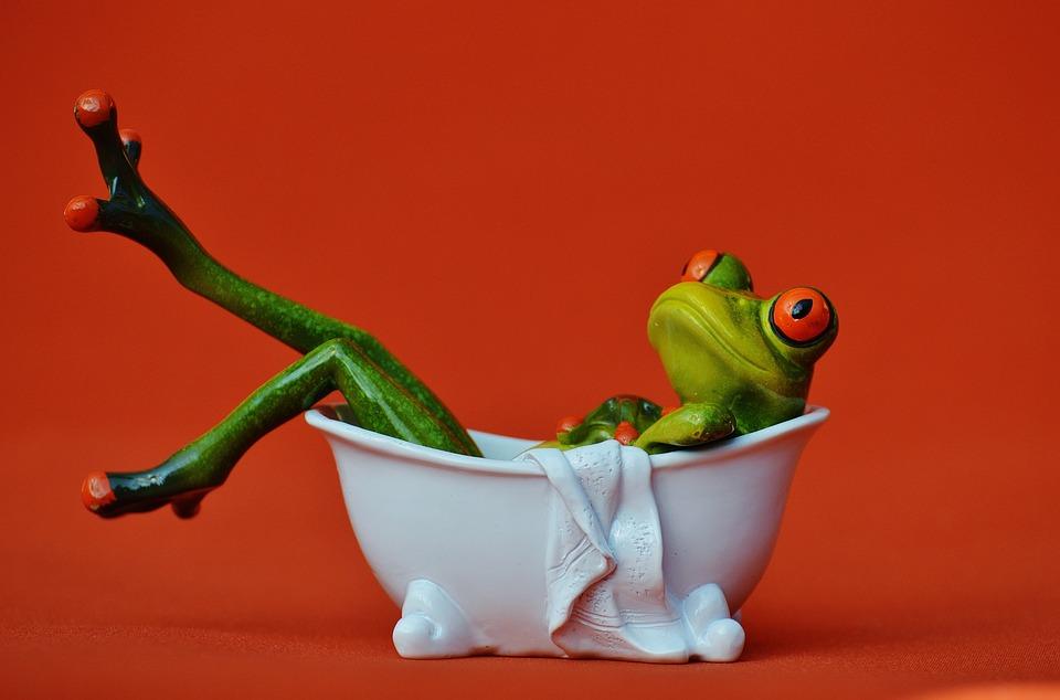 Foto gratis rana vasca da bagno nuotare immagine for Vasca per stagno