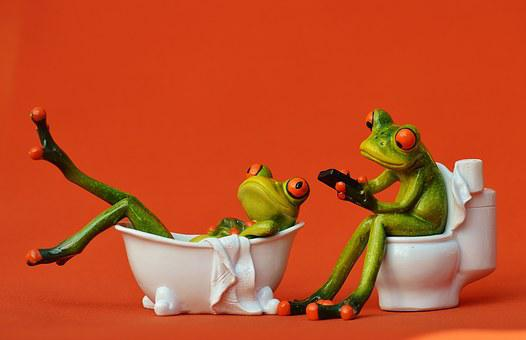 Bath Loo Frogs Funny Bathroom Session Cute
