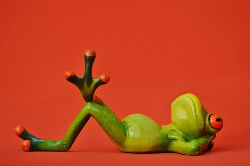 Żaba, Leżącego, Zrelaksowany, Ładny