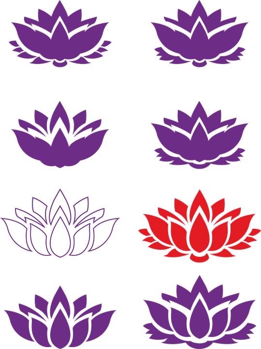 Lotto flower buddhism lotus free image on pixabay lotto flower buddhism lotus flower lotus eastern mightylinksfo