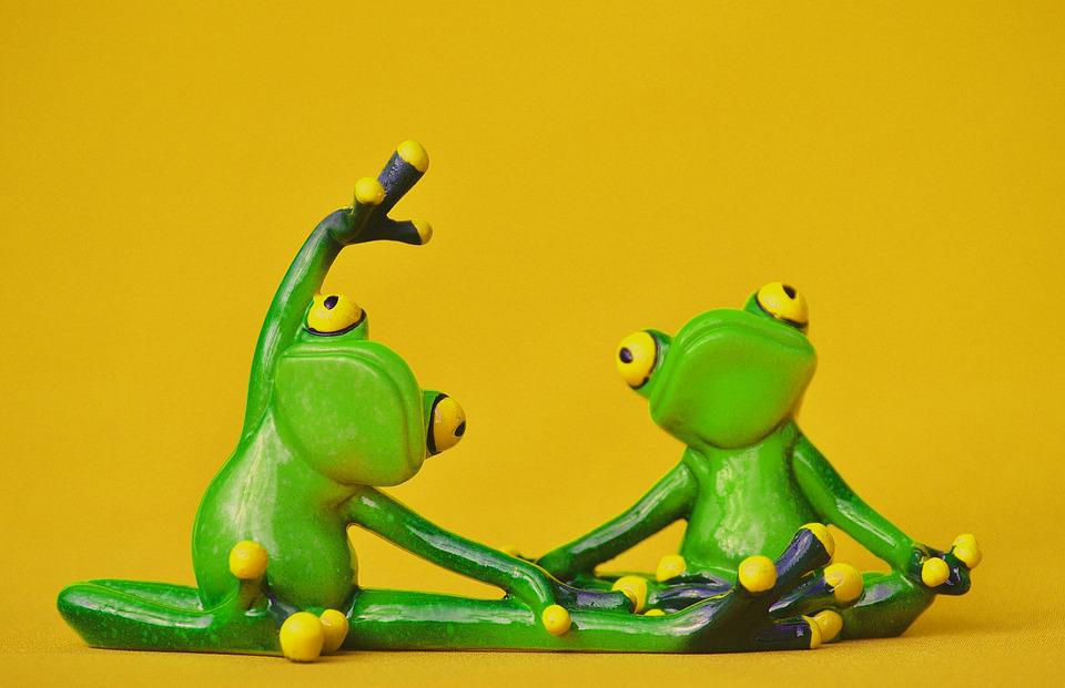frogs figure yoga  u00b7 free photo on pixabay