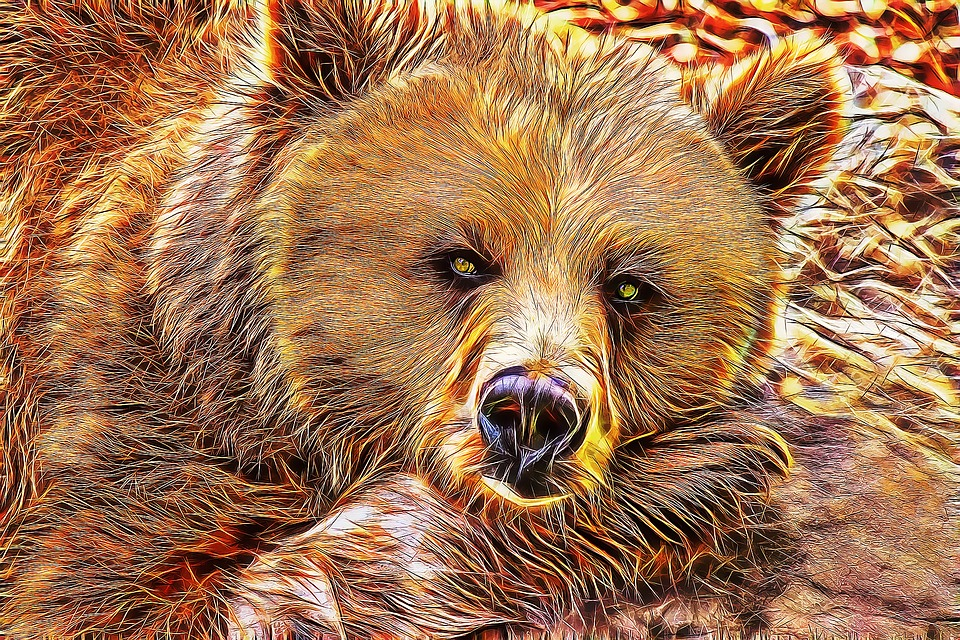 free illustration bear  bear fractal  bear art free hand vector free download hand vectors showing 4 fingers