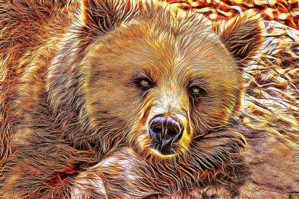 Ayi Fraktal Sanat Pixabay De Ucretsiz Resim