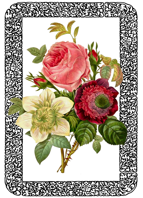 free illustration  vintage  rose  bouquet  framed - free image on pixabay