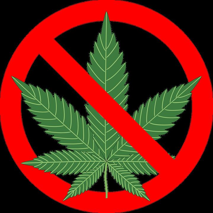 cannabis hemp leaf free vector graphic on pixabay. Black Bedroom Furniture Sets. Home Design Ideas