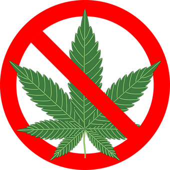 Cannabis Hemp Leaf Marijuana Plant Po