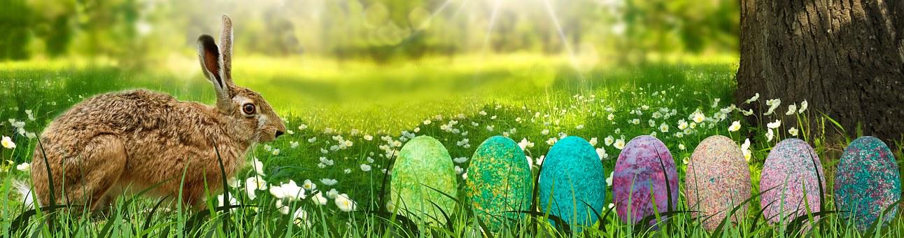 Banner, Easter, Hare, Landscape, Egg