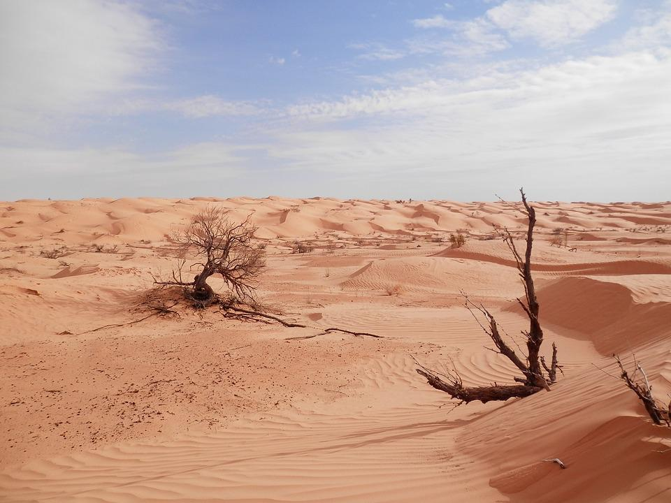 Sahara%20Desert%20-%20Free%20photo%20on%20Pixabay