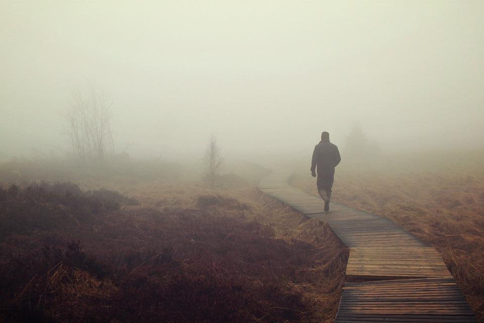 скачать туман через торрент - фото 6