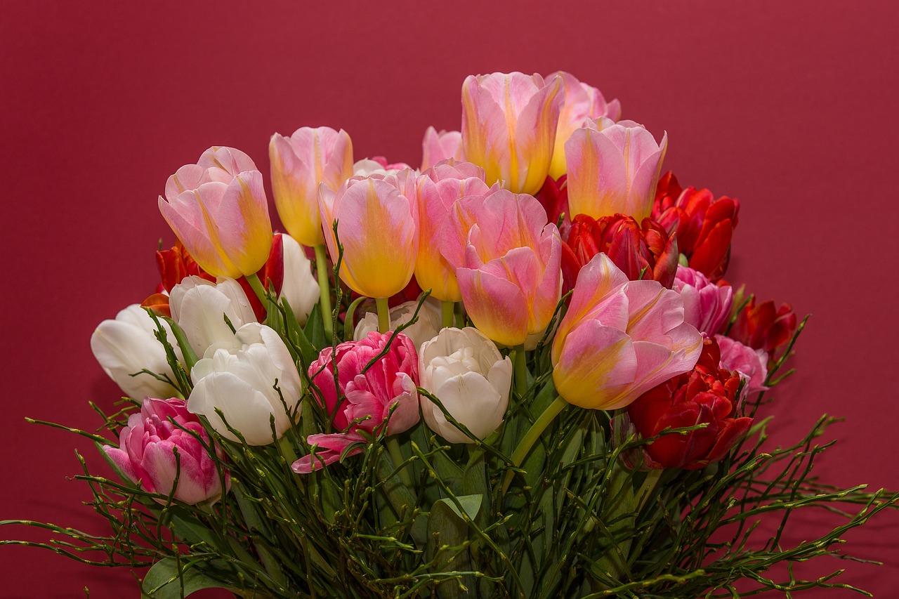 Фото цветы букет тюльпаны