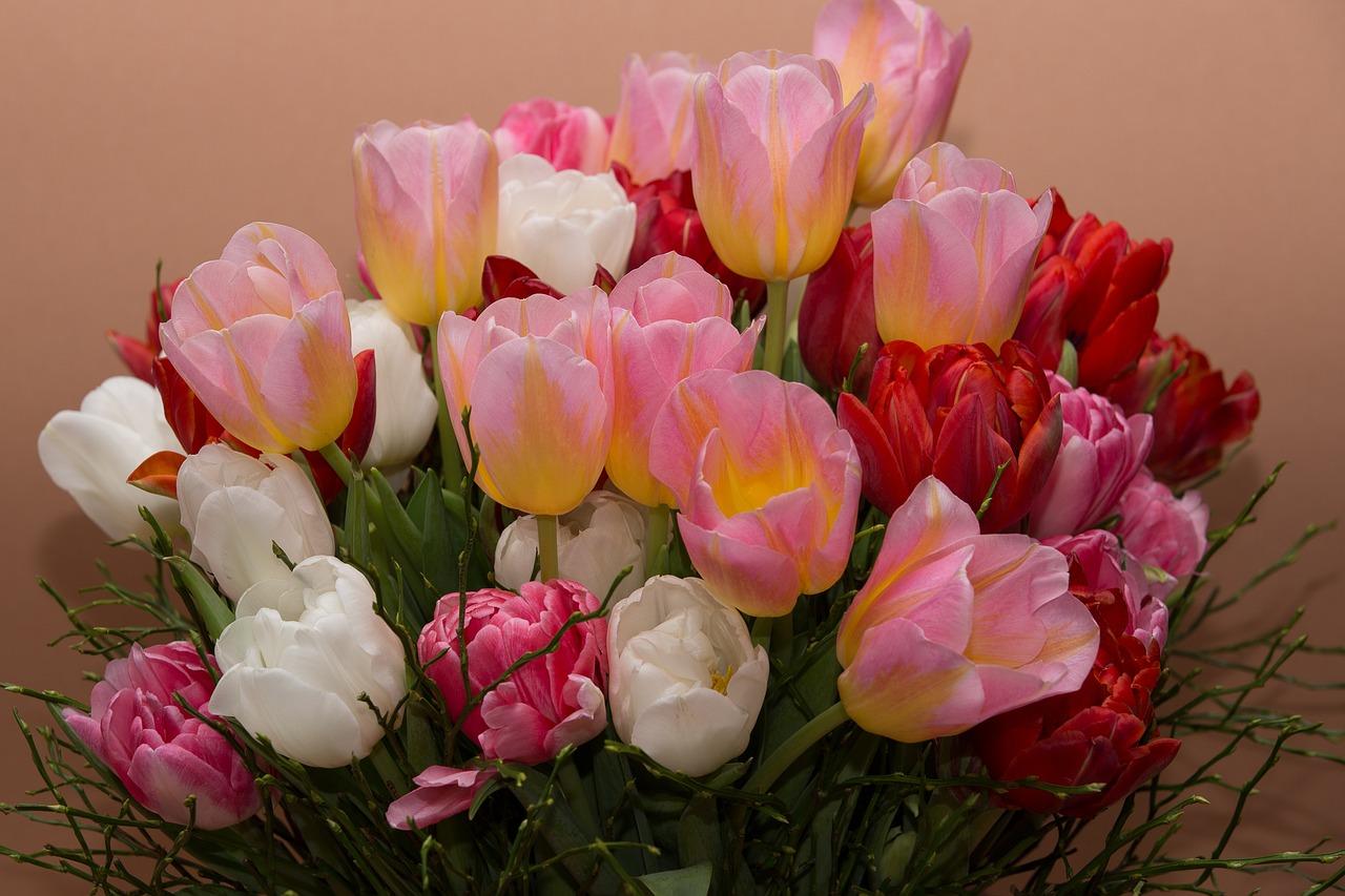 фото букетов из тюльпанов высокого разрешения занимается хоккеем, неравнодушен