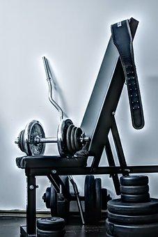 Gym, Exercise, Sport, Bodybuilding