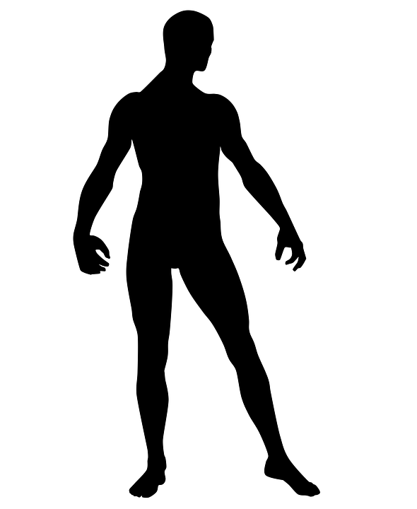 Standing human body silhouette  Free people icons