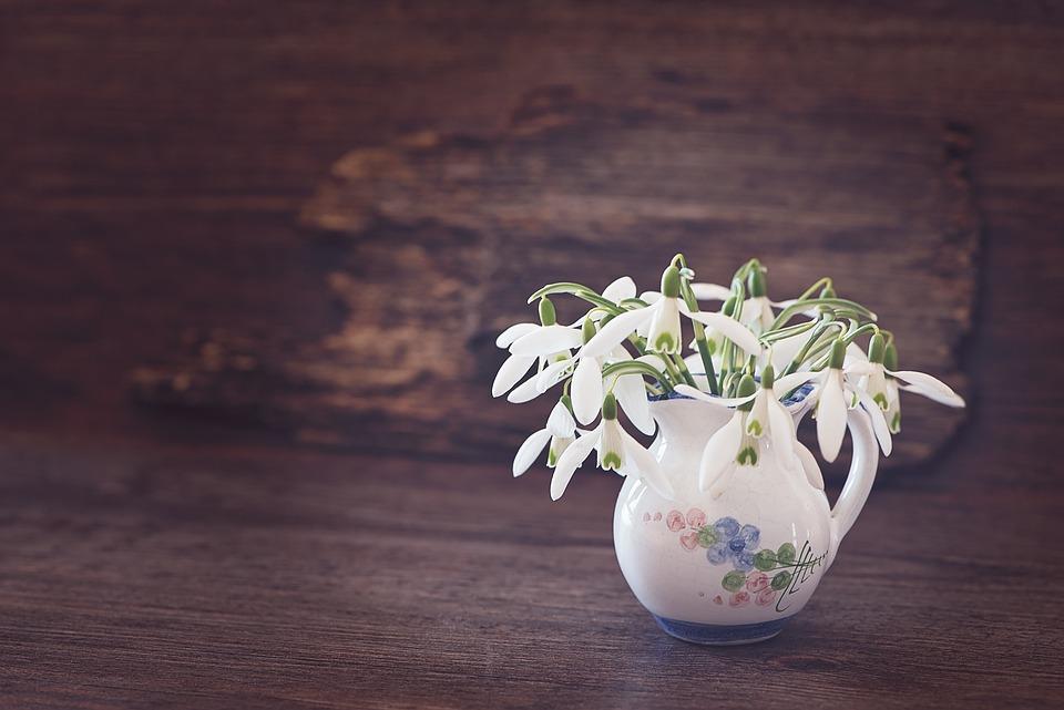 Snowdrop flower spring free photo on pixabay snowdrop flower spring flower white early bloomer mightylinksfo