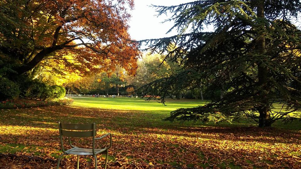 Jardin Du Luxembourg Paris Free Photo On Pixabay