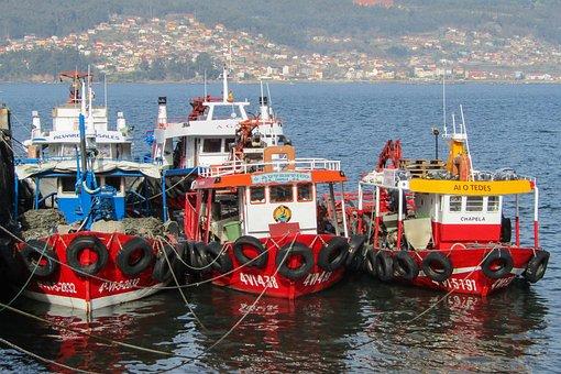 Spania, Galicia, Båter, Fiske, Blåskjell