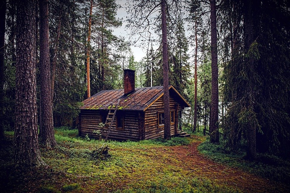 Free Photo Hut Forest Seefeld Log Cabin Free Image