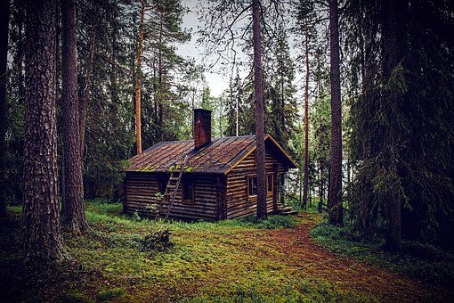 Hut Forest Seefeld Log Cabin Nature Forest