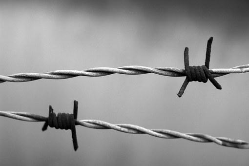Barbed Wire, Rust, Rusty, Wire, Bound