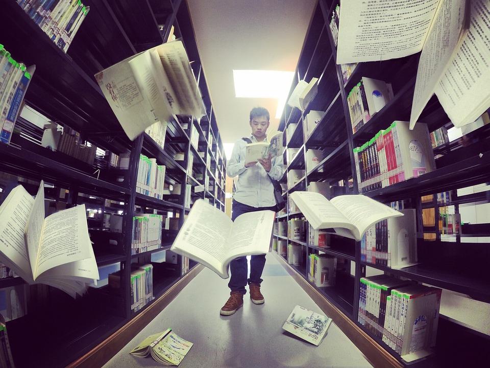 Bibliothèque, Petit Frais, Big Data, Livres, Pesanteur