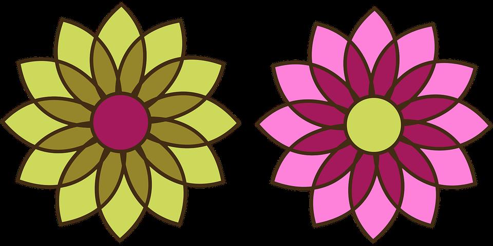 Mekar Bunga Krisan Gambar Vektor Gratis Di Pixabay