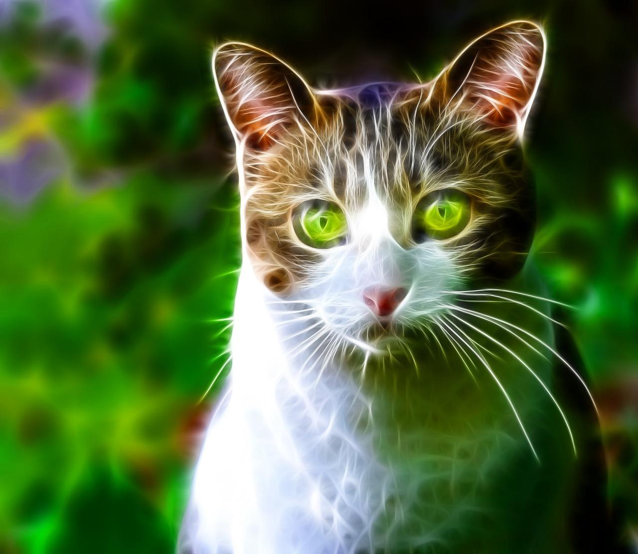 Абстрактные кошки с зелеными глазами картинки