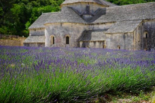 Chateau with lavender field in Provence