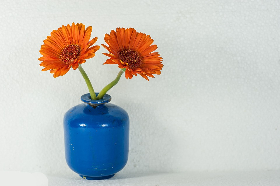 Flower Vase Free Photo On Pixabay