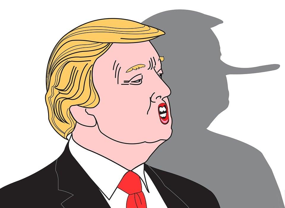 Triunfo De Donald, Trump, La Mentira De Triunfo, Donald