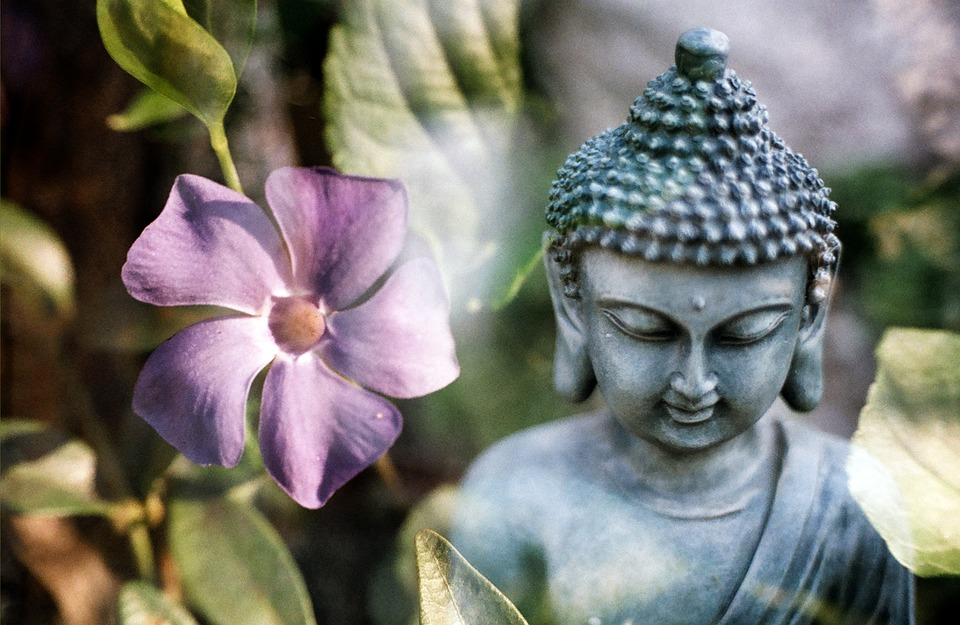 rose bud buddhist personals Rosebud idioms /phrases rosebud the founder of buddhism 1938 was the first to win the australian and french and english and united states singles.
