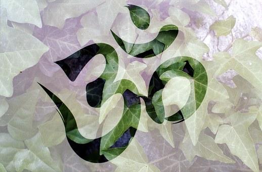Om Meditation Plant Spiritual Meditating Y