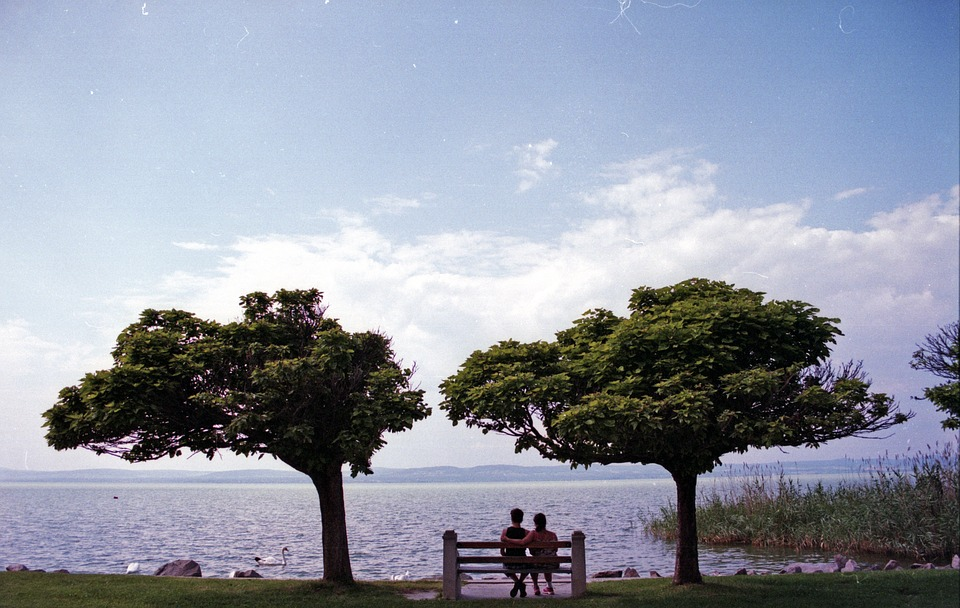 Lovers, Bench, Lake, Trees, Love, People, Man, Couple
