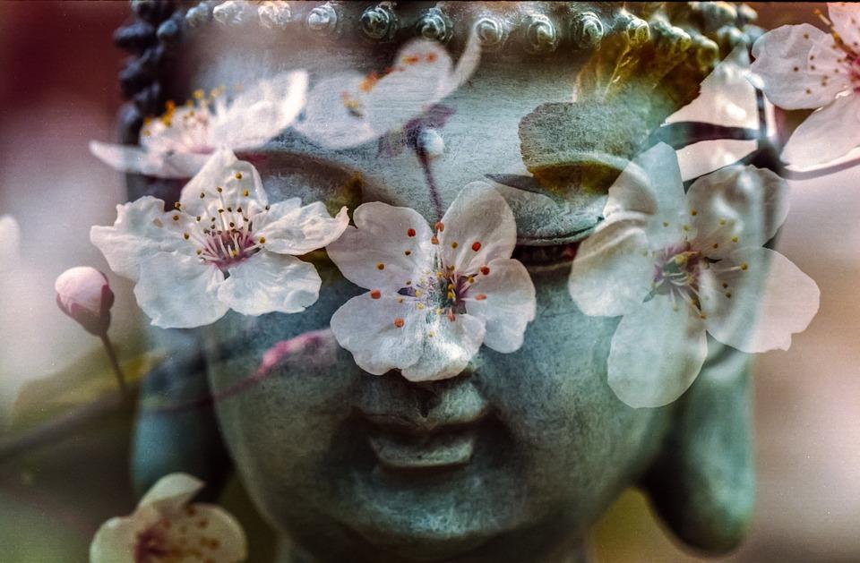 Buddha, Flower, Buddhism, Religion, Peace, Spiritual