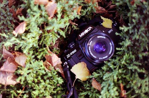 Vintage Camera, Film, Vintage, Camera