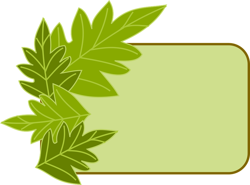 Border Green Leaves · Free vector graphic on Pixabay