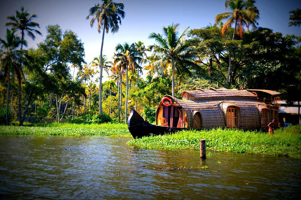 Water, Boats, Trees, Coconuts, Kerala, Houseboats