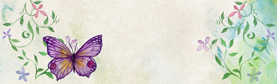 purple butterfly wallpaper border