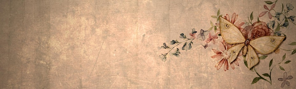 Vintage Butterfly Banner Web Internet Website