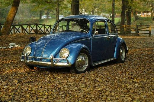 Car Vintage Park Leaves Autumn Classic Old