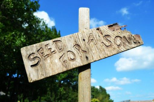 Seed Song Natural Rustic Sign Singing Post