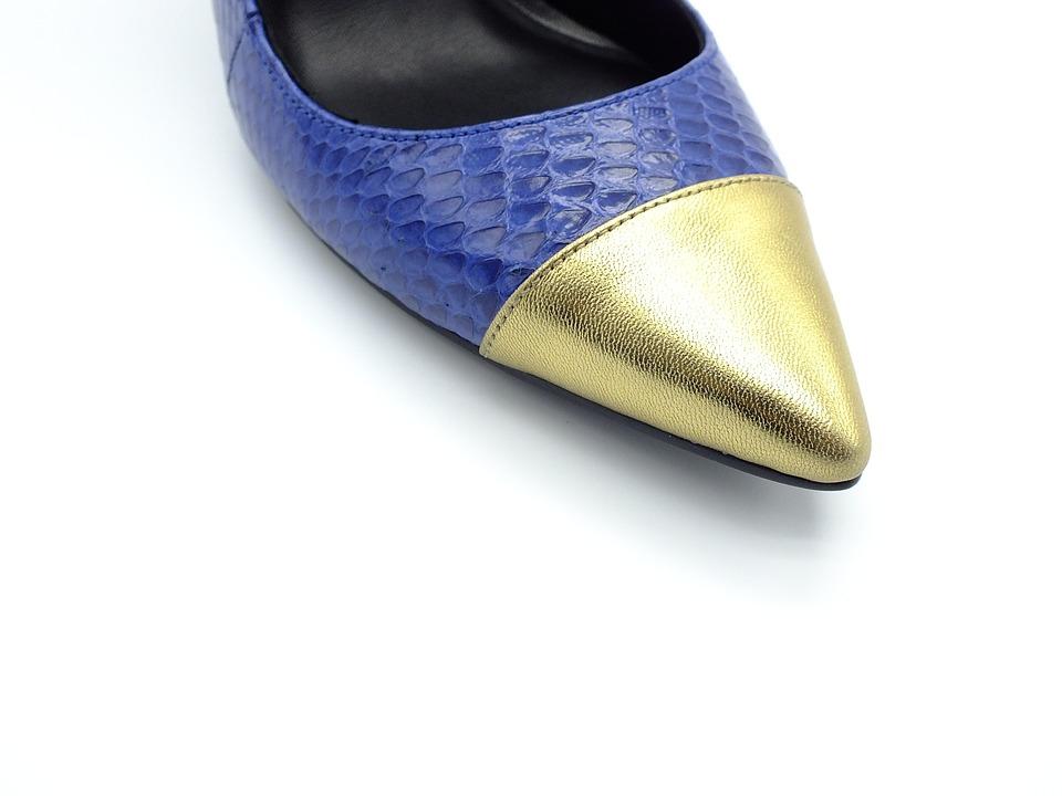 Queen Fan Schuhe Tyrant Kostenloses Foto Auf Pixabay