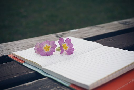 Bench, Flower, Notebook, Pen, Wooden