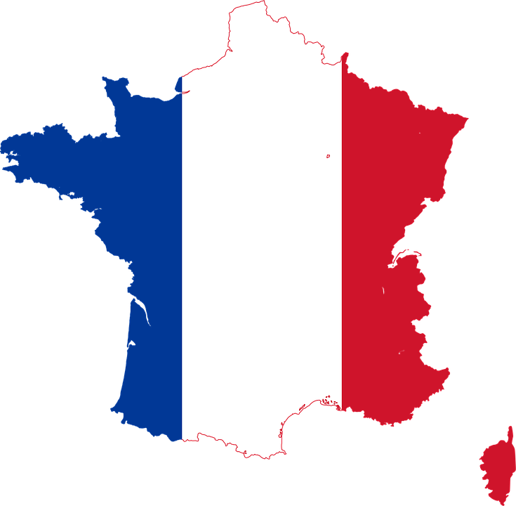 Image result for logo carte france drapeau png